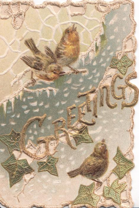 GREETINGS in gilt. 3 robins perch on ivy in snowy designed background