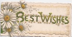 BEST WISHES in glittered green across perforation, white daisies with yellow centres left & in complex embossed front design
