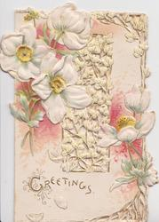 GREETINGS in gilt below white anemones & perforated central design, pink background, embossed