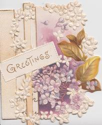 GREETINGS in gilt on white plaque left crossing major perforation, lilac right, purple/pink background , embossed