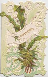 REMEMBRANCE(R illuminated) on white plaque across green perforated design with fern & succulent leavesperforated design, embossed