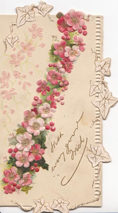 WITH EVERY GOOD WISH in gilt, ribbon of pink wild roses vertically, white perforated marginal design with stylised leaves