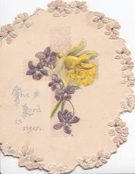 THE LORD IS RISEN in silver violets & daffodil in front of cross, stylised marginal floral design