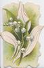 no front title, lilies-of-the-valley, stylised white leaves green background