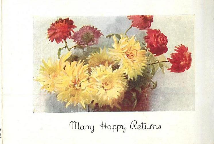 MANY HAPPY RETURNS yellow & red chrysanthemums