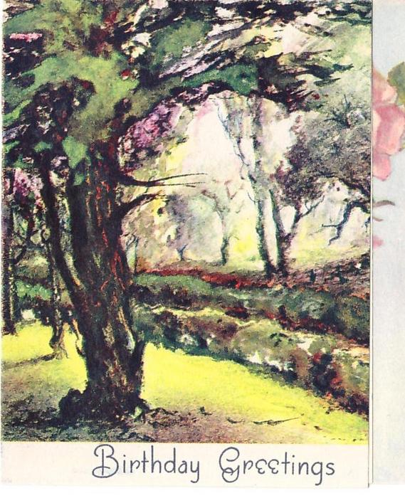 BIRTHDAY GREETINGS woodland scene with prominent tree front left