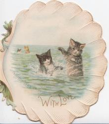 WITH LOVE, A HAPPY LITTLE PARTY below 2 kittens on hind legs playing in the sea