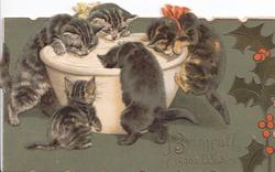 MERRIE CHRISTMAS GREETING in gilt, 6 kittens eat at enormous dish, stylised holly, deep green background