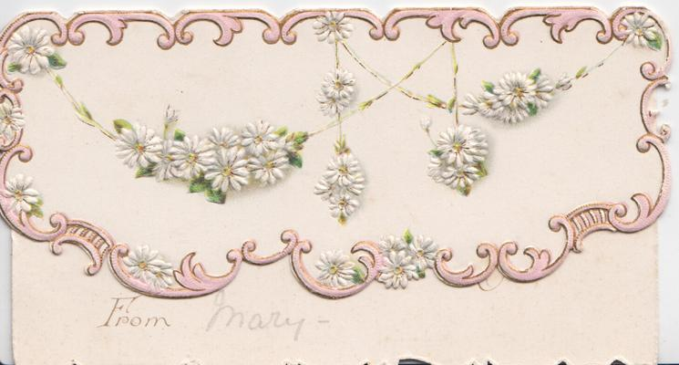 no front title, white daisies with yellow centres in floral loops surrounded by pink marginal design