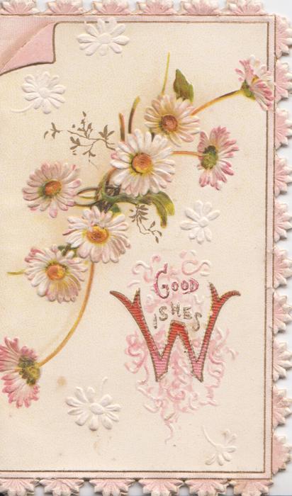 GOOD WISHES(W illuminated) below white & pink daisies pink marginal design
