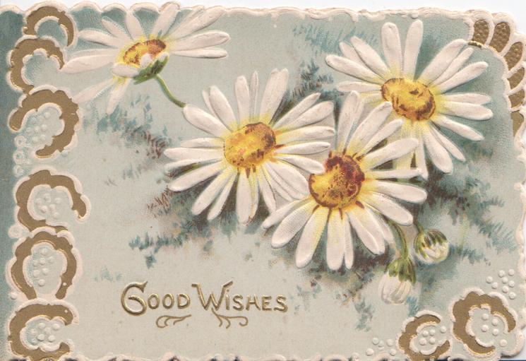 GOOD WISHES, white daisies with yellow centres, gilt horseshoes in marginal design