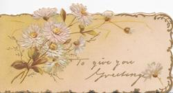 TO GIVE YOU GREETING, white daisies with yellow centres left, pale fawn background