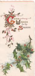 GOOD WISHES FOR THE SEASON(G,W &S illuminated) in design above holly