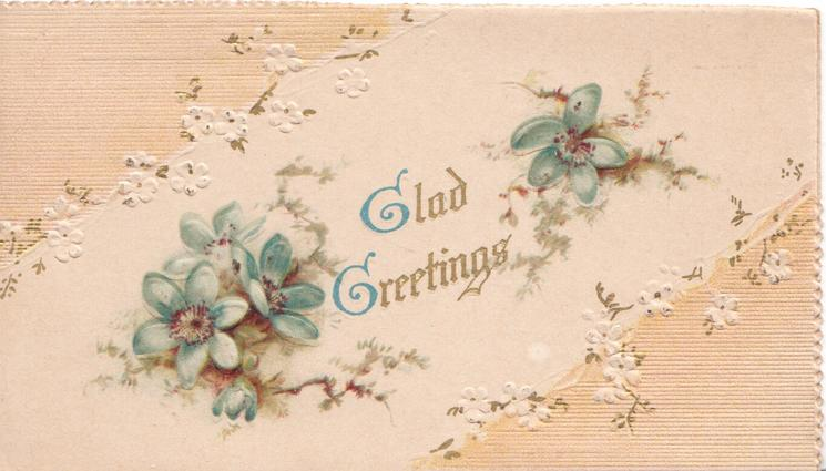 GLAD GREETINGS in gilt between blue anemones, pale pink corner designs