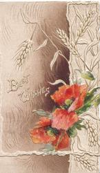 BEST WISHES left in white, red poppies & barley right, brown background, white design right