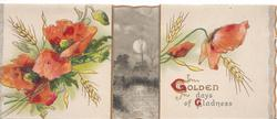 GOLDEN DAYS OF GLADNESS(G &G illuminated), red poppies & barley on both front flaps, night rural scene visible between