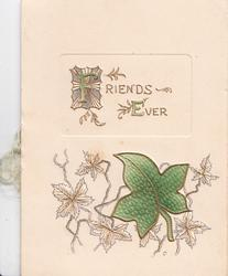 FRIENDS EVER in gilt on plaque above stylised ivy leaves