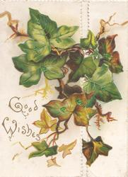 GOOD WISHES in gilt below left, glittered ivy leaves across both flaps