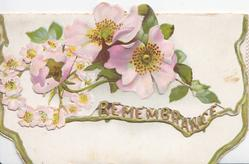 REMEMBRANCE in gilt, perforated pink wild roses above & also on bottom flap, green margins