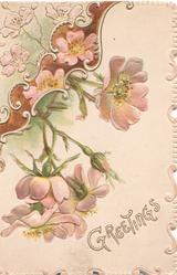 GREETINGS in gilt below pink wild roses & design above