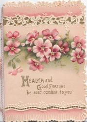 HEALTH AND GOOD FORTUNE BE EVER CONSTANT TO YOU in gilt, pink wild roses above, pink, white & gilt design top & bottom