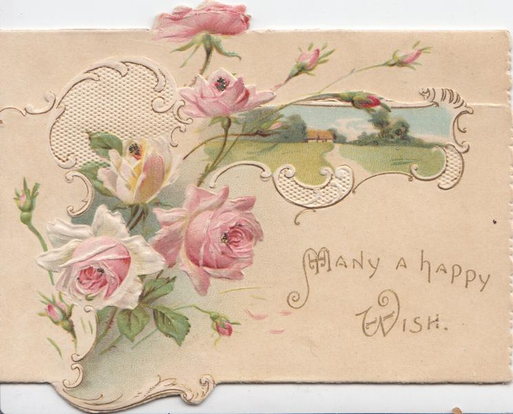 MANY A HAPPY WISH in gilt below pink roses, rural inset & white design