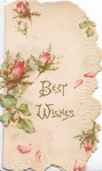 BEST WISHES in gilt below pink moss roses, white & rose marginal design