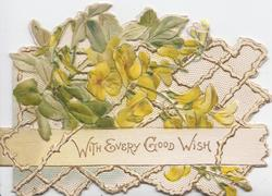 WITH EVERY GOOD WISH on white plank below yellow primroses in front of white design