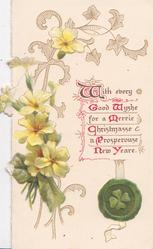 WITH EVERY GOOD WISHE FOR A MERRIE CHRISTMASSE A PROSPEROUSE NEW YEAR yellow primroses & design left