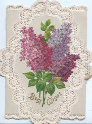 BEST WISHES in gilt below purple lilac across 2 flaps, perforated oval white design, grey background