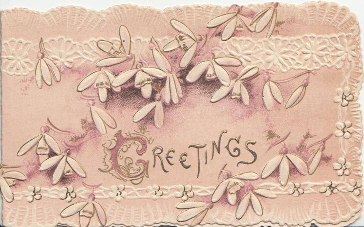 GREETINGS(G illuminated) in gilt among white cyclamen, white marginal design, pale purple background