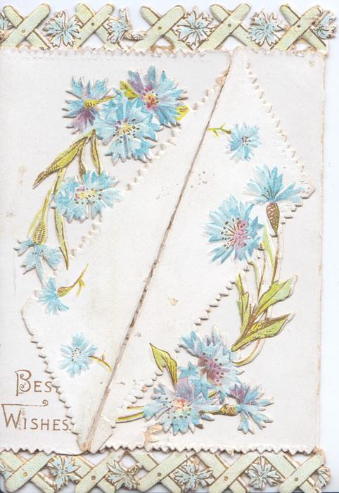 BEST WISHES lower left below blue cornflowers, which are also in top & bottom marginal designs