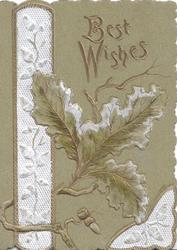 BEST WISHES in gilt above oak leaf & acorn, acorns in white design left, green background