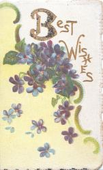 BEST WISHES(B & W illuminated & glittered)  in gilt above violets over yellow design