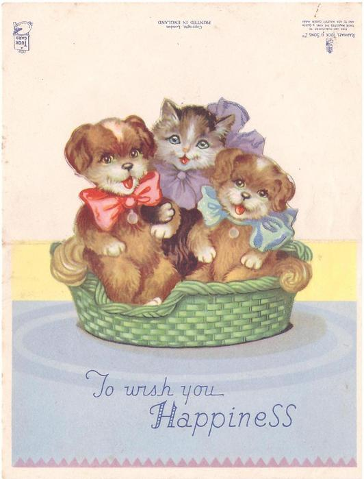 TO WISH YOU HAPPINESS two dogs & a cat wearing large bows in woven green basket