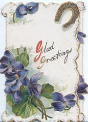 GLAD GREETINGS (G illuminated ) under gilt horseshoe, above violets, marginal design