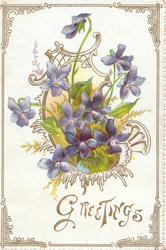 GREETINGS in gilt violets in complex central design, gilt marginal design