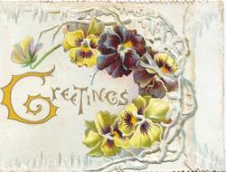 GREETINGS (G illuminated)in gilt, multicoloured pansies on right of perforated front flap, cream background
