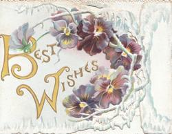 BEST WISHES(B & W illuminated & glittered)in gilt left of loop of multicolour pansies & white design