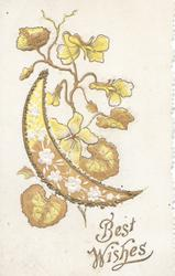 BEST WISHES glittered sliver of moon with pansy design in front of yellow pansies