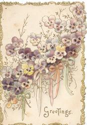 GREETINGS white & purple pansies diagonally across front, above ribbons, gilt marginal design