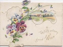WITH EVERY GOOD WISH in gilt on lower front flap, multicoloured pansies in ornate white design & rural inset