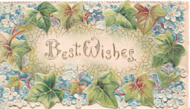 BEST WISHES(B & W illuminated) in gilt across centre,  forget-me-nots & ivy in dense marginal design