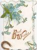 BEST WISHES(B & W illuminated) in gilt below forget-me-nots above, gil glittered horseshoe lower left