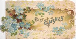 BEST WISHES in blue central,  forget-me-nots left & around, floral marginal design