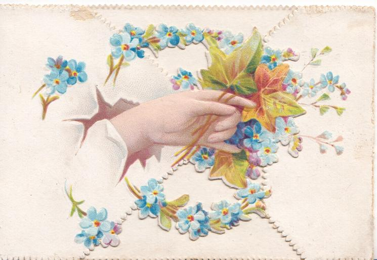 no front title. female hand on left flap holds ivy leaves, many forget-me-nots around