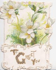 TO GREET YOU (T,G,&Y illuminated) in gilt on plaque below, white anemones above