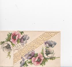 no front title, multicoloured anemones on both flaps, much perforated cream design in background