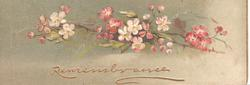 REMEMBRANCE in gilt, pink & white wild roses hoizontally across deep green background