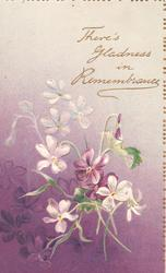 THERE'S GLADNESS IN REMEMBRANCE in gilt on purple background, purple & white violets  around, embossed
